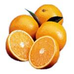 3 orange picture
