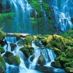 free 3d nature wallpaper