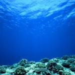 nice ocean picture