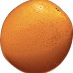 nice orange picture