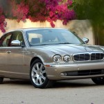 brown jaguar picture