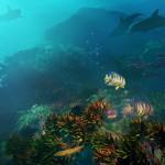 Under Sea picture