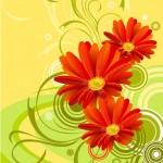 gerbera flower background wallpaper