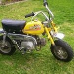 honda 50cc bikes picture