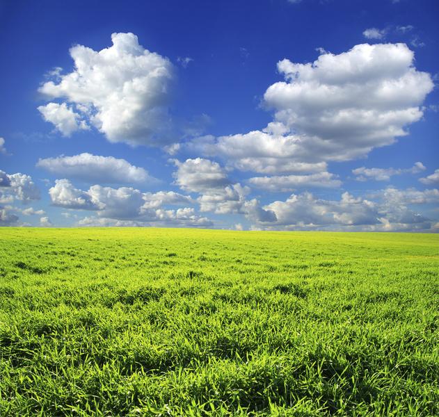 nice landscape picture