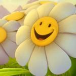 yellow flower happy wallpaper