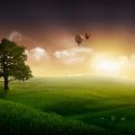 balloons and tree dawn wallpaper