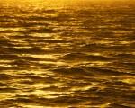 beautiful gold wallpaper