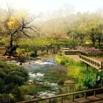 natural hd landscape wallpaper