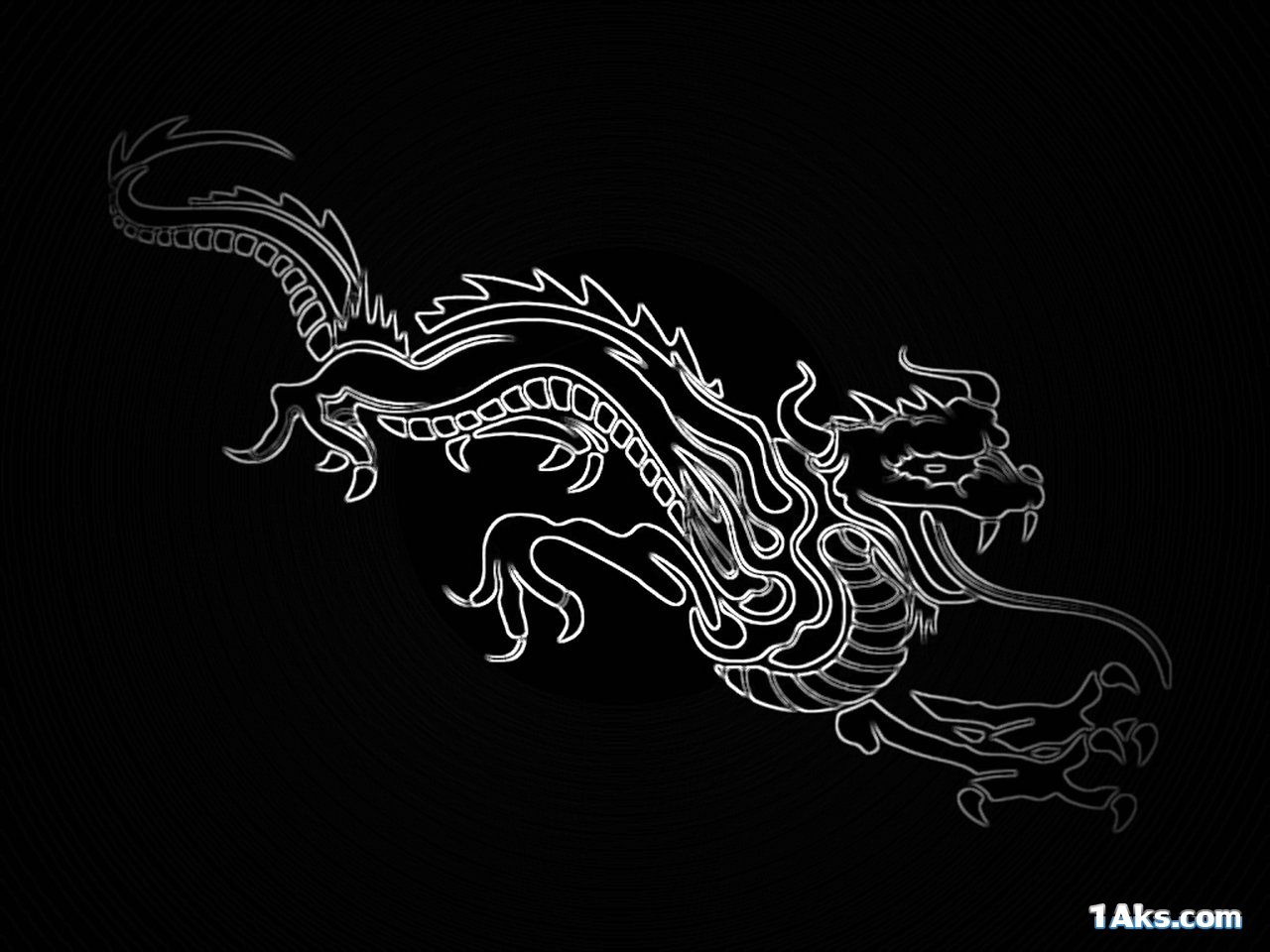nice hd dragon wallpaper