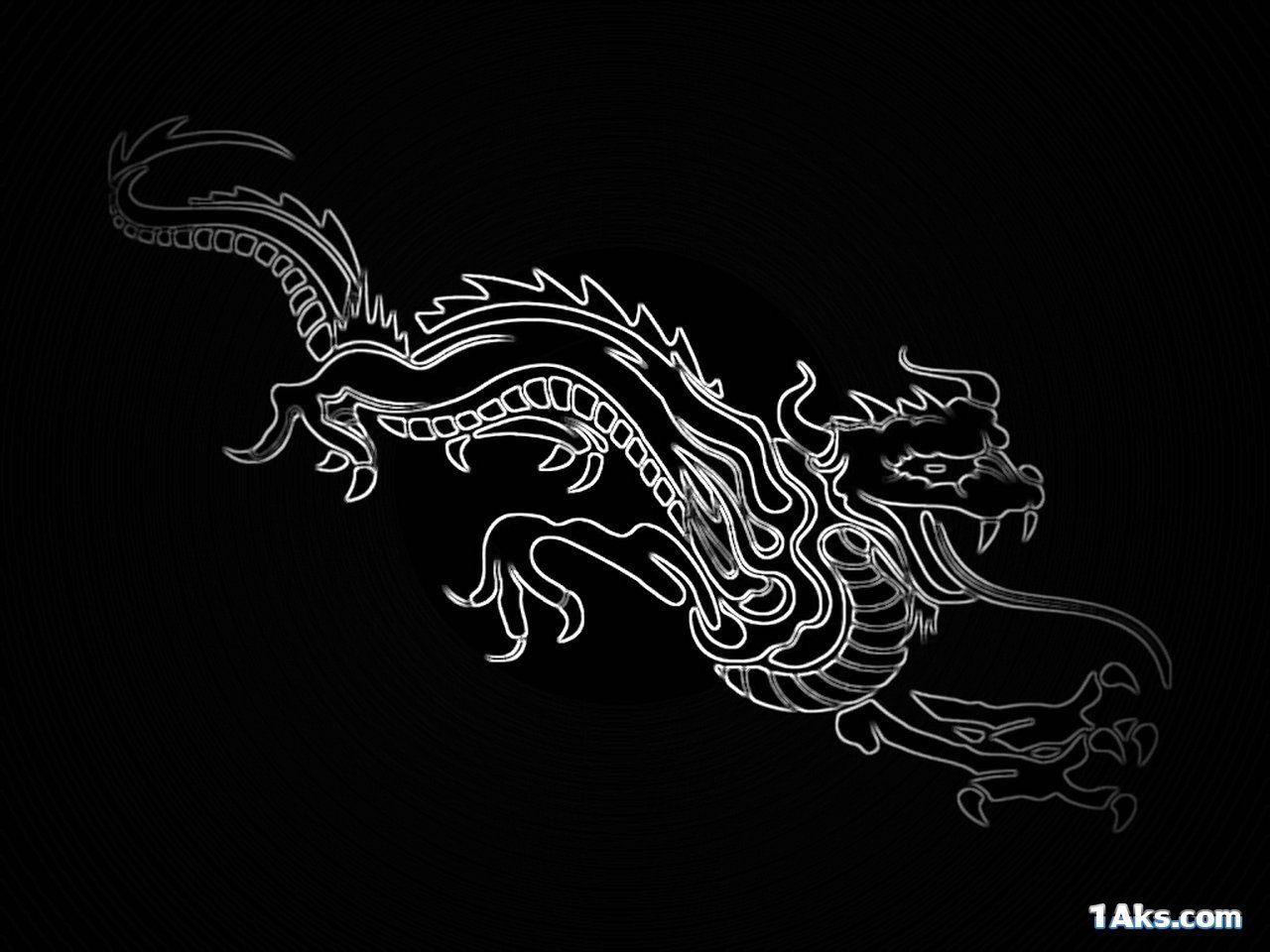 nice dragon wallpaper