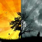 hd cool wallpaper hd