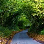 landscape beautiful photos