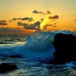 3d nature photographs