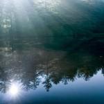 sweet nature photographs