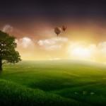 sunset free wallpaper image