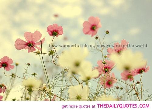 super life quotes