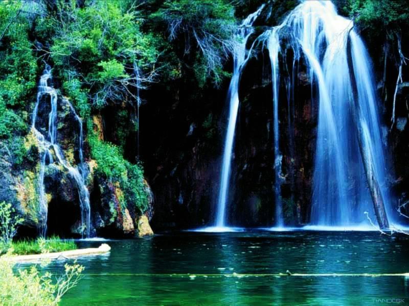 amazing backgrounds of nature