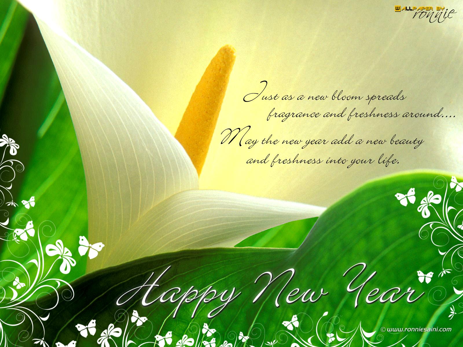 beautiful latest new year backgrounds