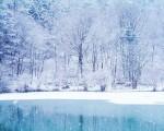 fantasy winter wallpapers hd