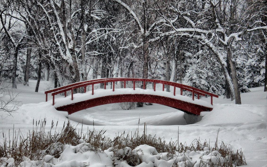 snow fall on bridge image