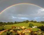 rainbow wallpaper photo