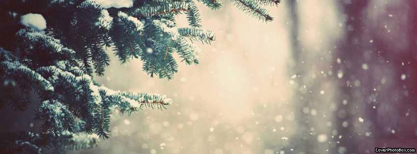 snowfall winter facebook