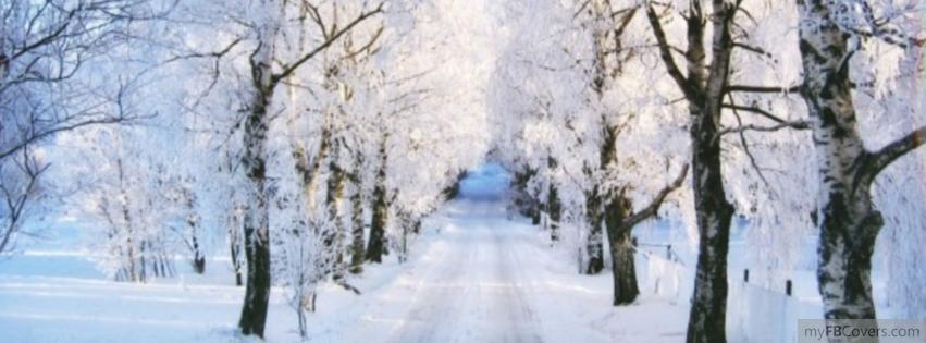 great winter facebook image