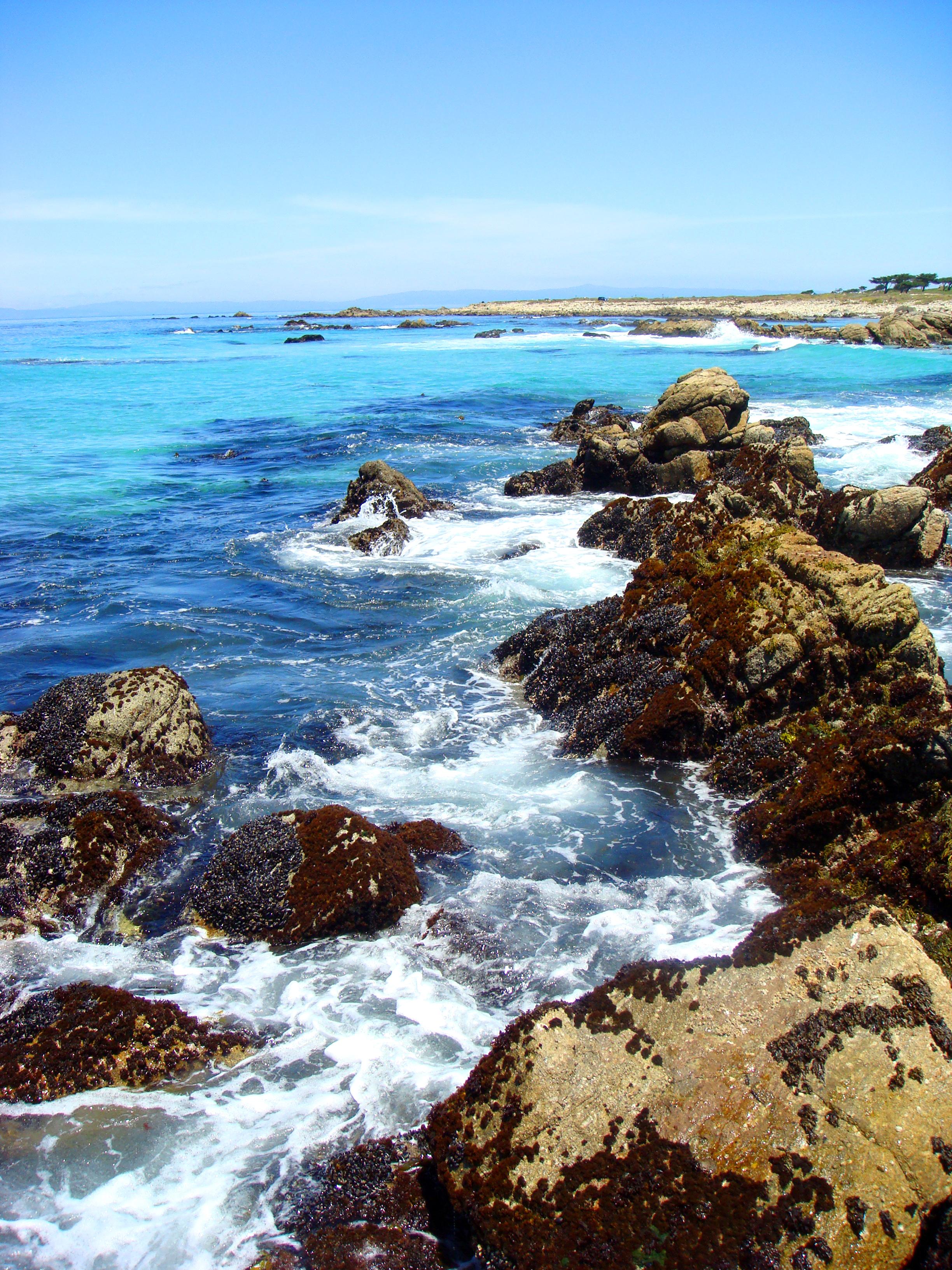 ocean pebble beach image