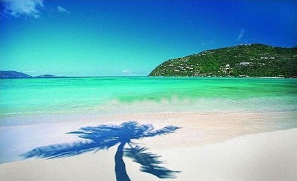 natural miami beach image