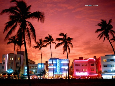 high quality miami beach