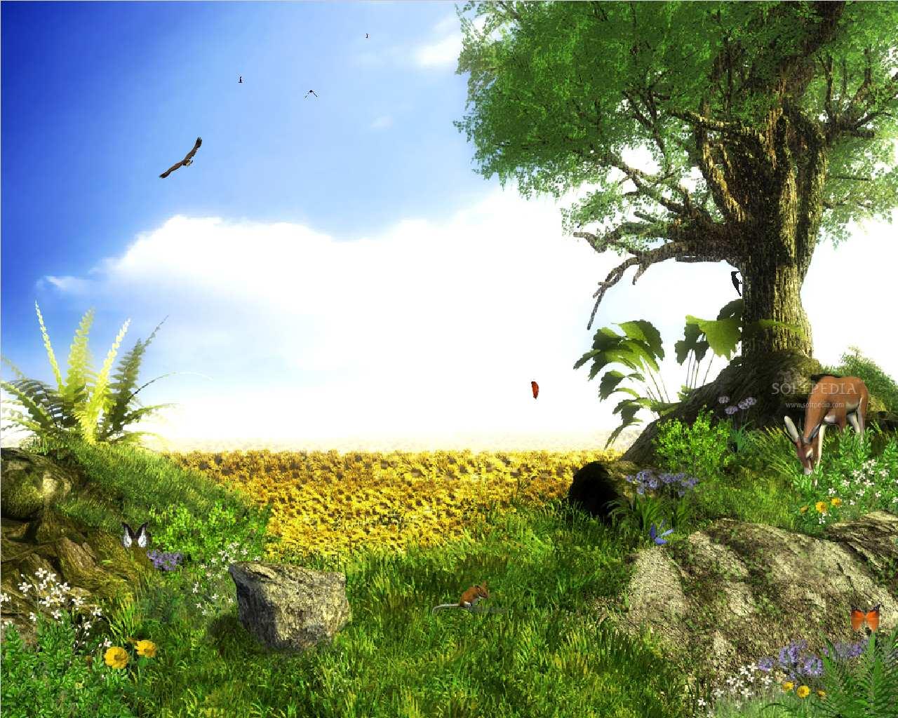 landscape computer image