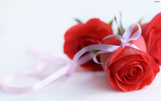 amazing 3d rose picture
