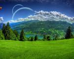 grass dreamland image