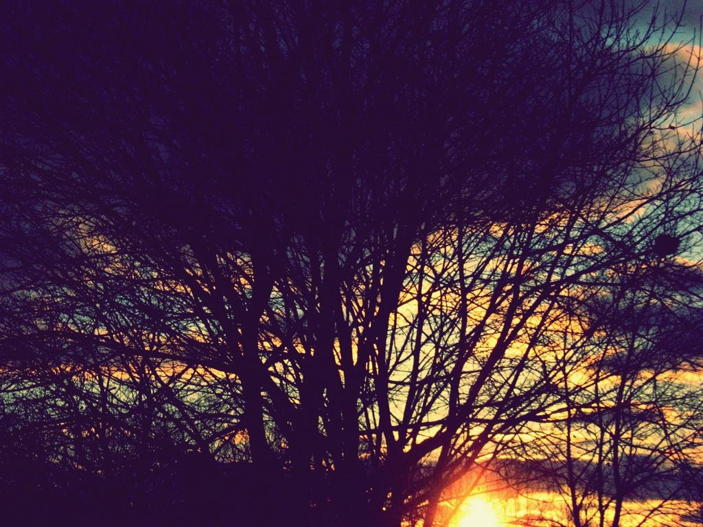fantasy vintage sunset image