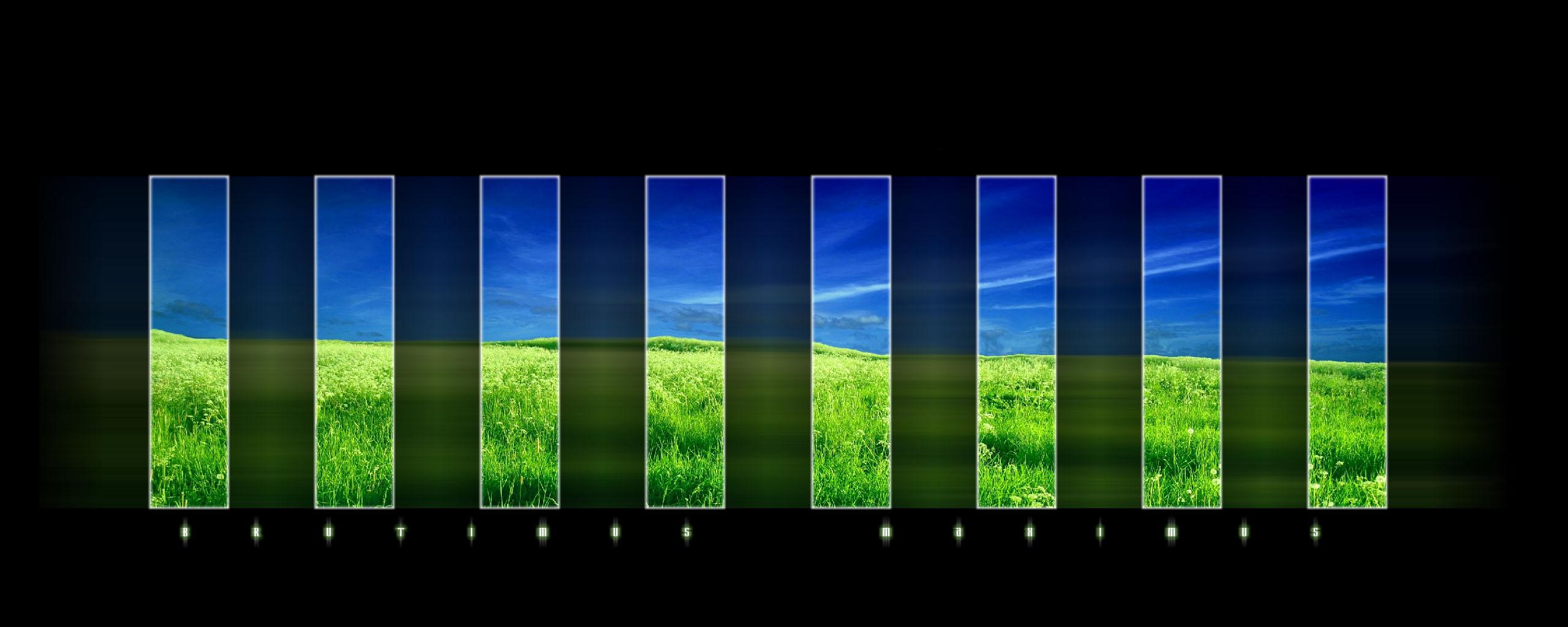 nature dualscreen image