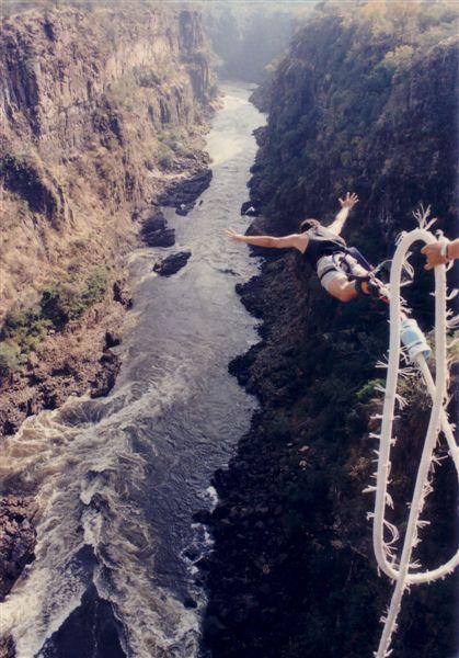 bills bungee jumping pc