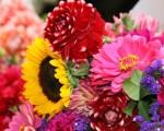 super fresh flowers image