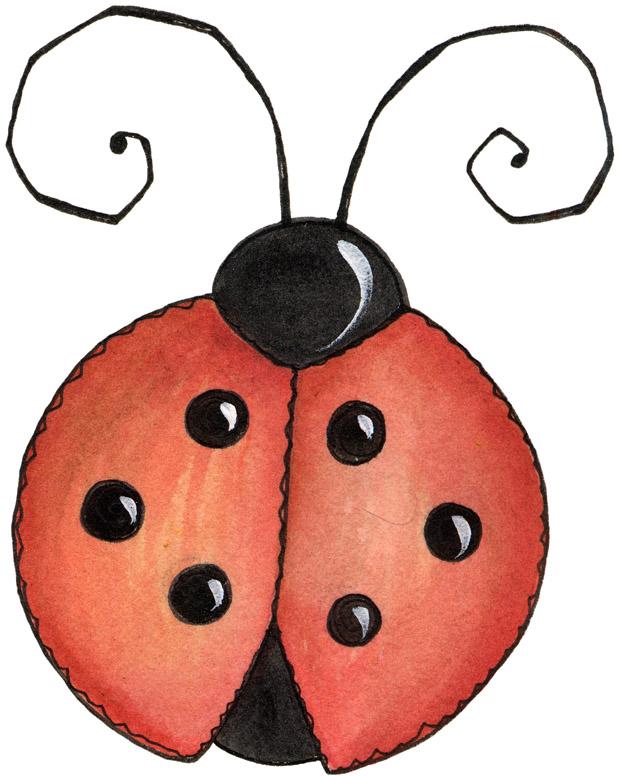 awesome ladybug picture