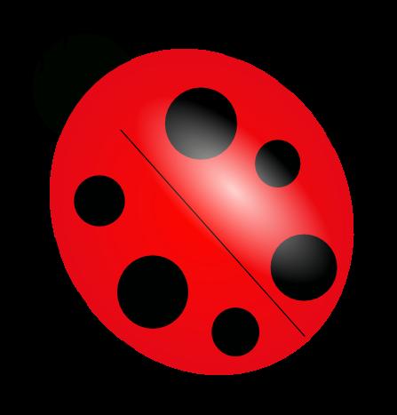 full big ladybug image