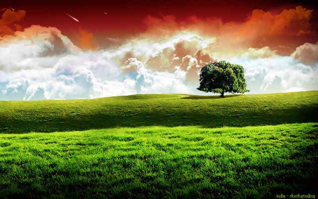 landscape hd india wallpaper