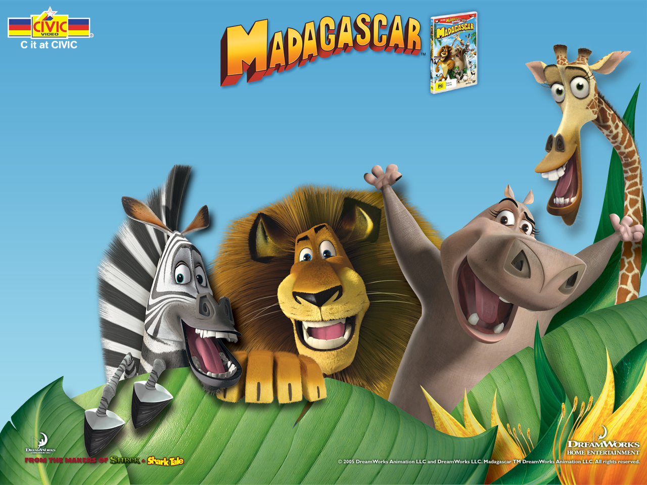 best madagascar wallpaper image