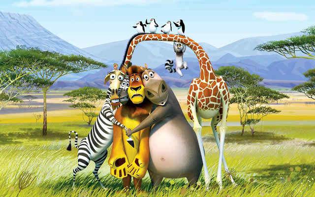 hd animal madagascar wallpaper