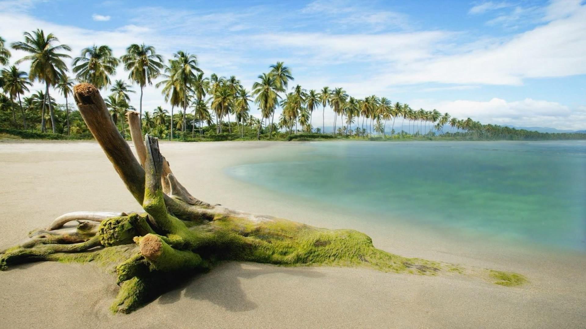 beach hd 1080p wallpapers pc