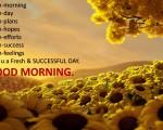 fresh flower good morning image