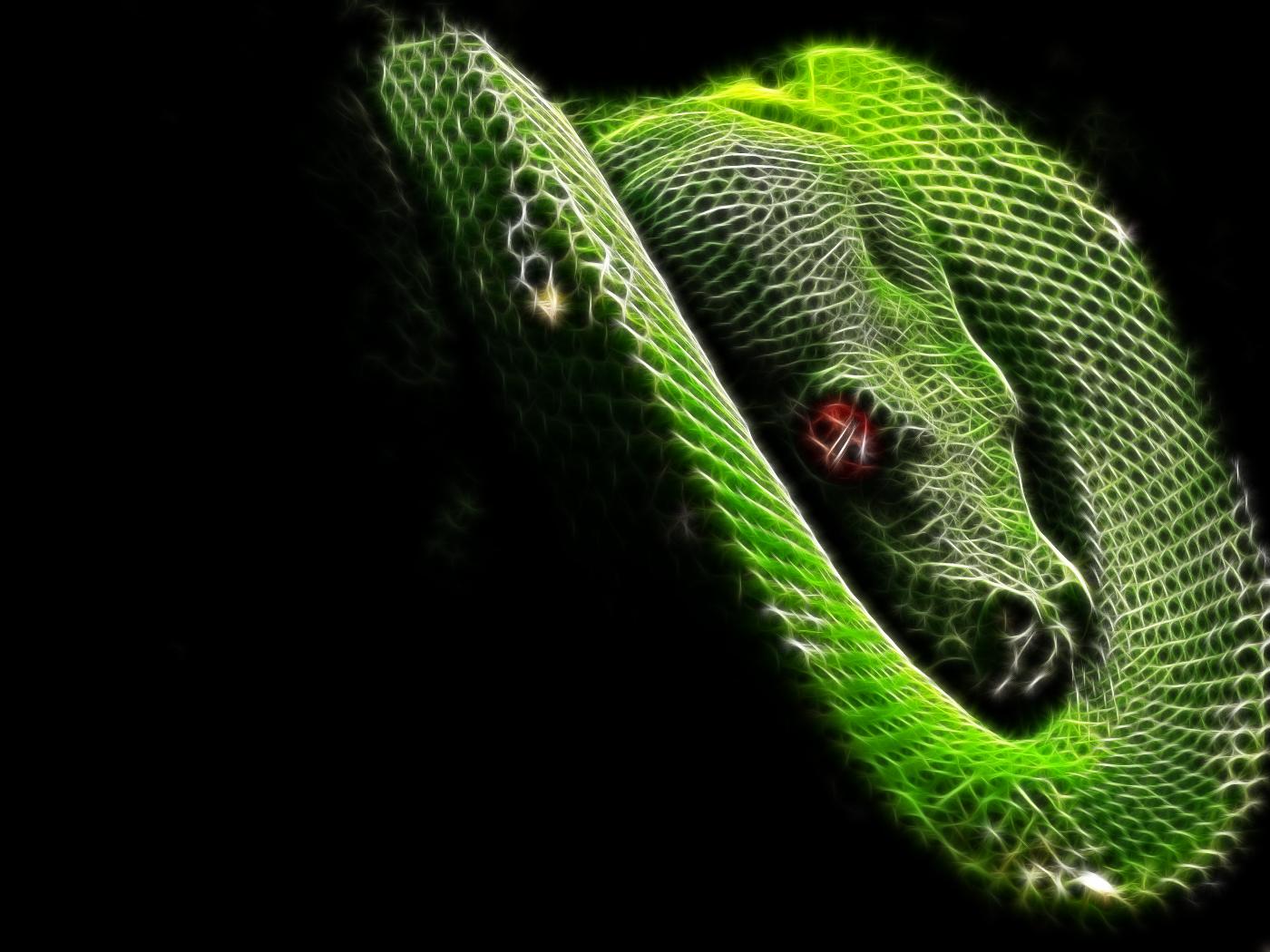 horrible snake background