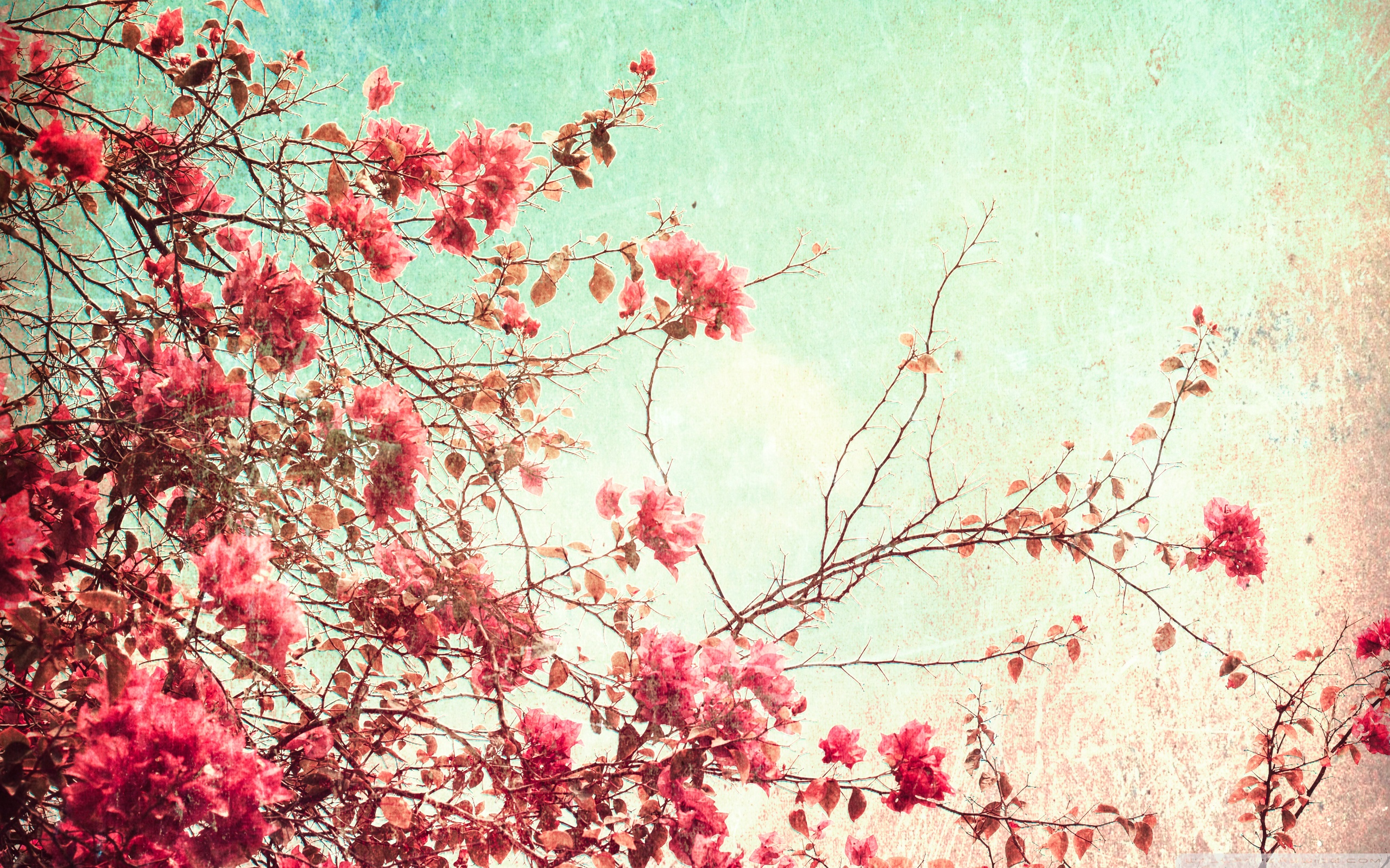 flower vintage wallpaper hd