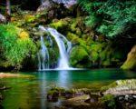 waterfall free hd wallpaper