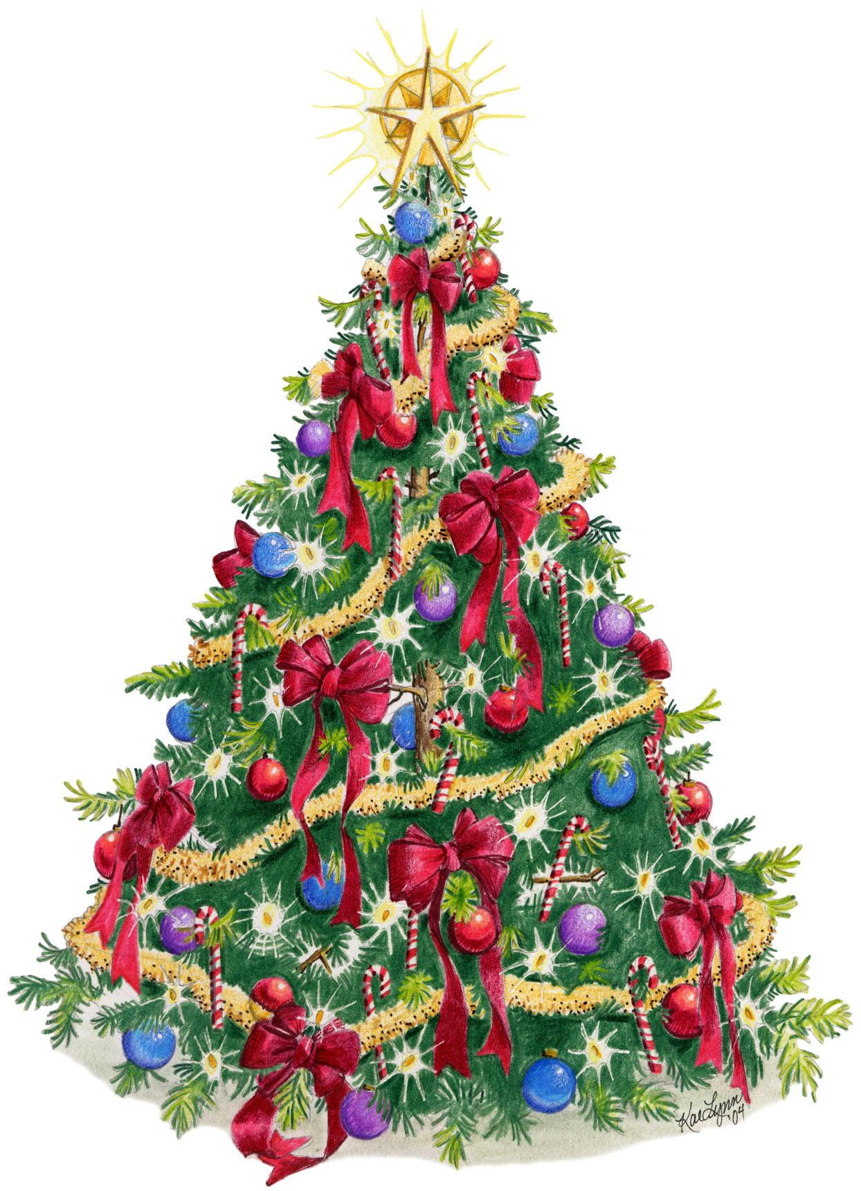 christmas tree pics image