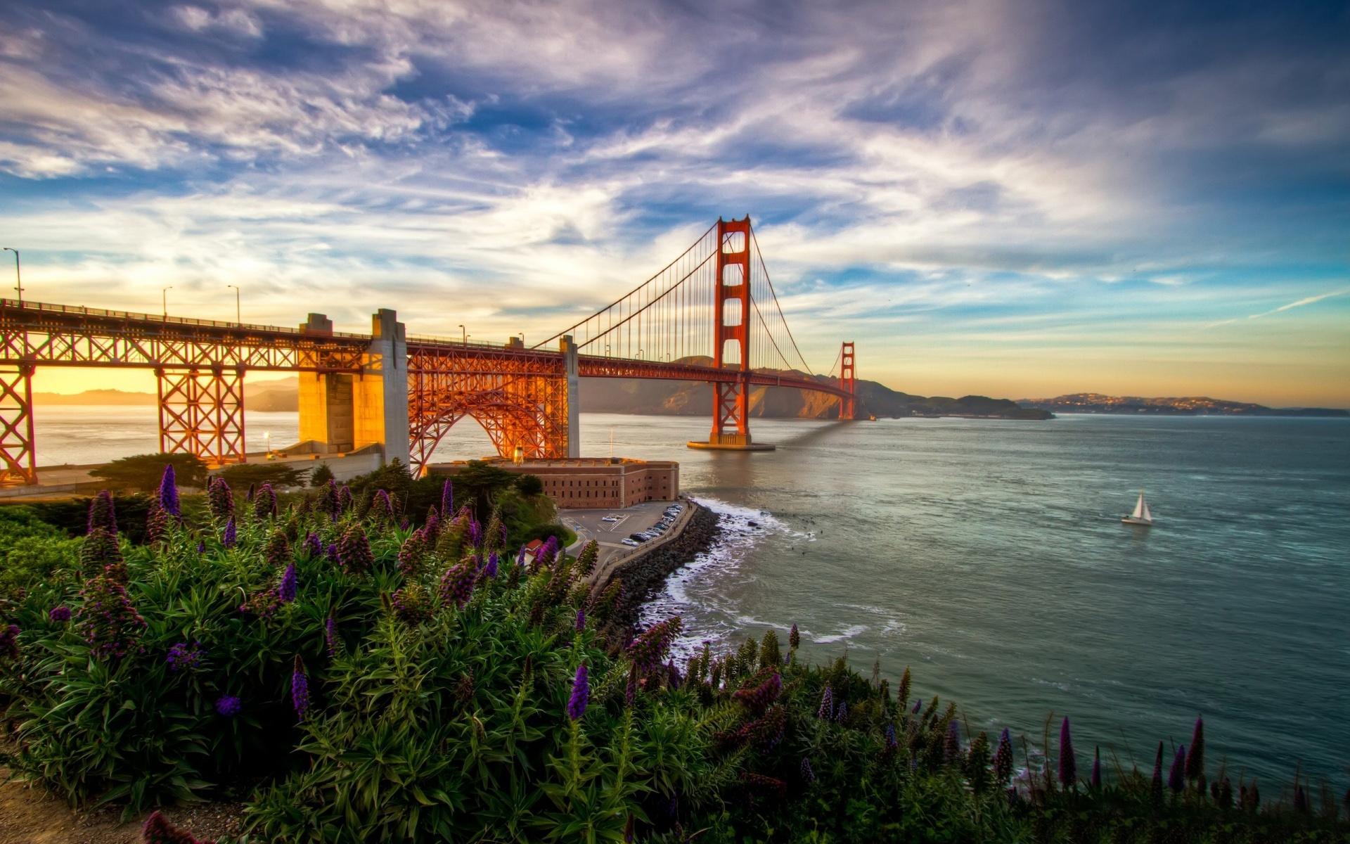 awesome bridge nature image